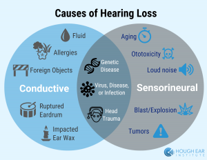 an analysis of the causes of hearing loss What causes hearing loss in children  4 this figure is based on data obtained through a meta-analysis conducted by the prevention of deafness and blindness.